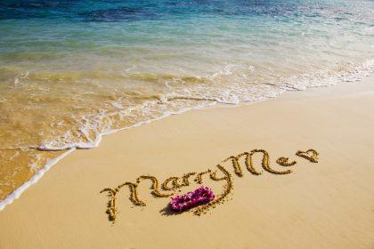 Chuyến du lịch đôi với lời cầu hôn bất ngờ