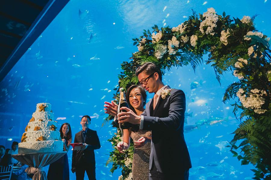 Tiệc cưới dưới đáy biển