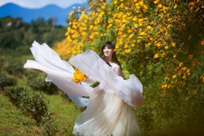 Ảnh cưới hoa dã quỳ Đà Lạt