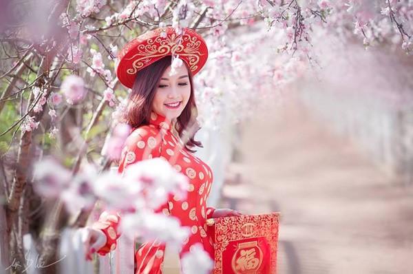 Áo dài truyền thống trong không gian đào nở của ngày Tết cổ truyền đã để lại những hình ảnh đẹp cho cô dâu.