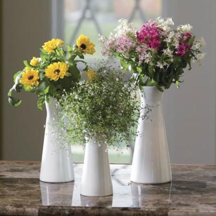 Bình hoa đẹp ngày tết