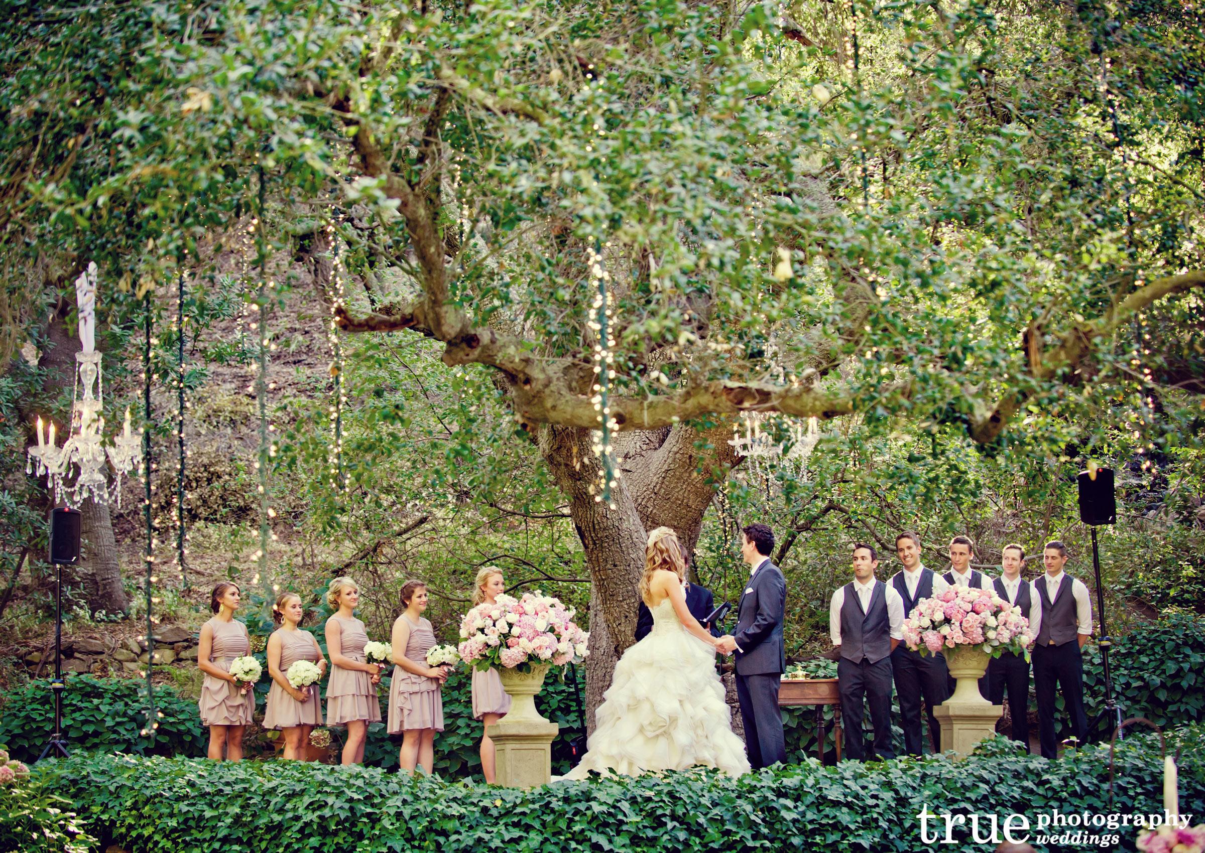 Tiệc cưới sân vườn