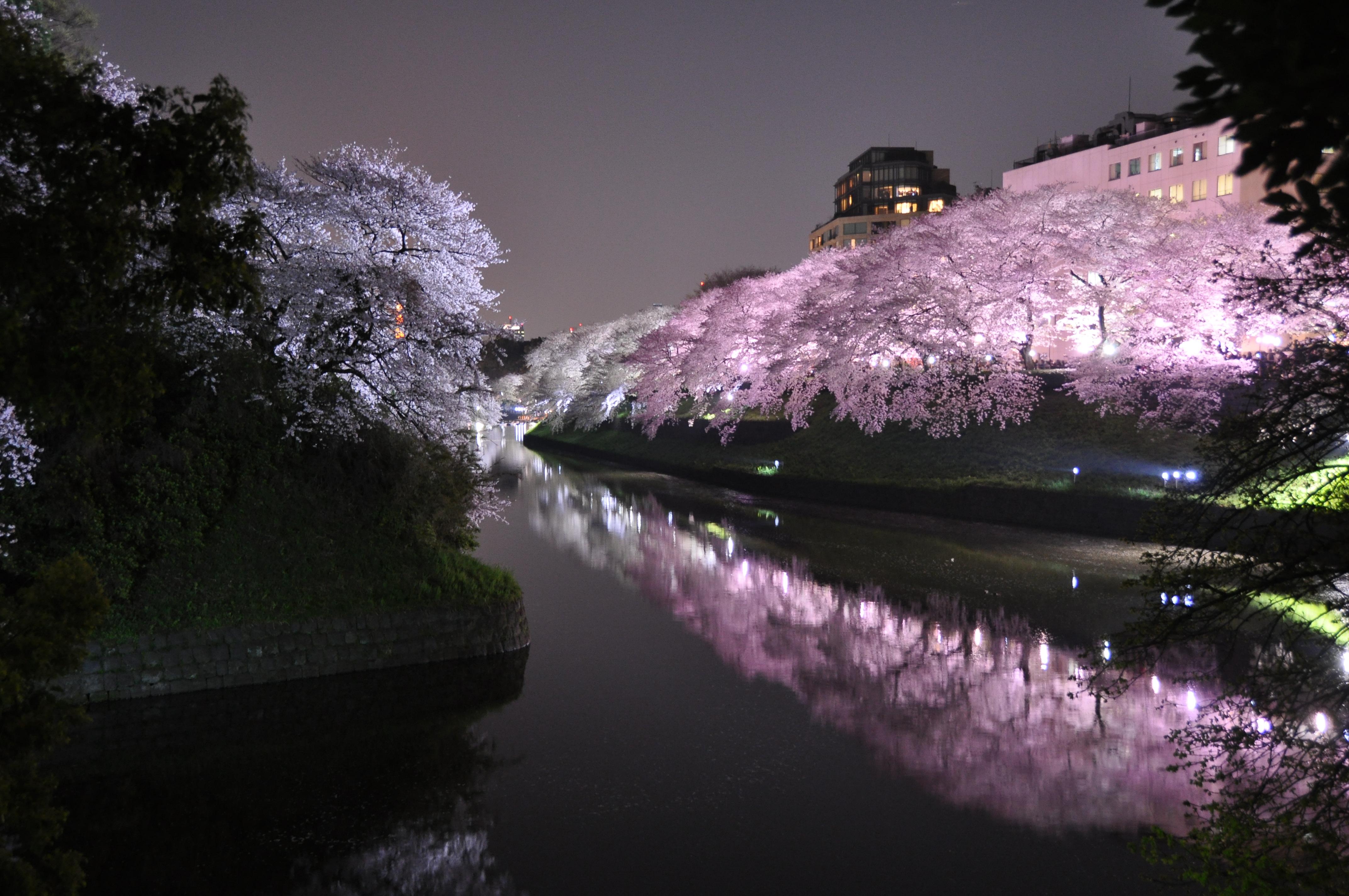 Công viên Sumida, Tokyo